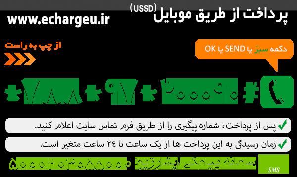 خرید و پرداخت از طریق موبایل  ussd